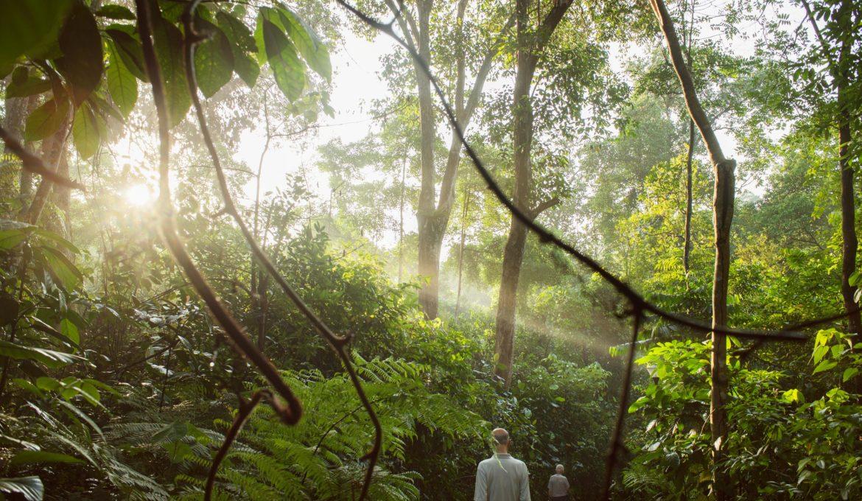 sustentabilidade e meio ambiente