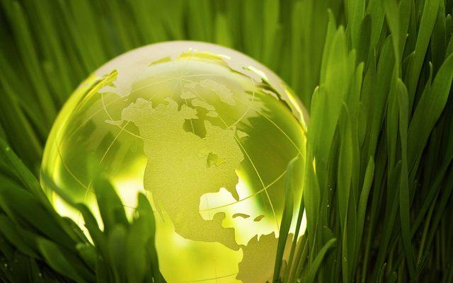 A história dos biocombustíveis