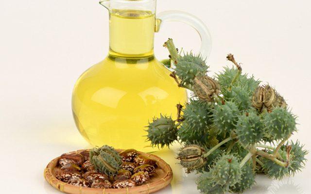 Biodiesel com óleo de mamona