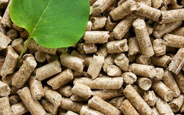 Biomassa e a matriz energética brasileira