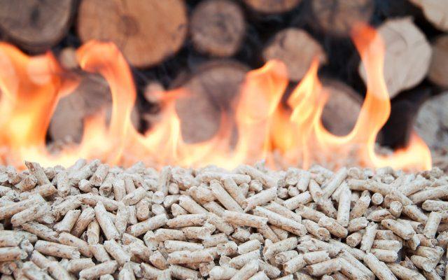 Como a biomassa pode ser utilizada para produção de energia