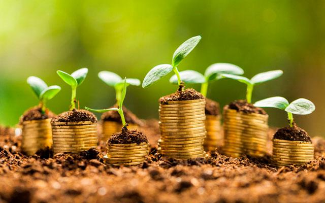 producao-de-enzimas-e-economia-verde