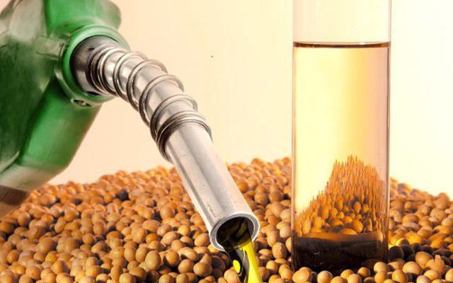 Programa Nacional de Produção e Uso do Biodiesel (PNPB)