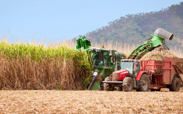 vantagens-da-colheita-mecanizada-da-cana-de-acucar
