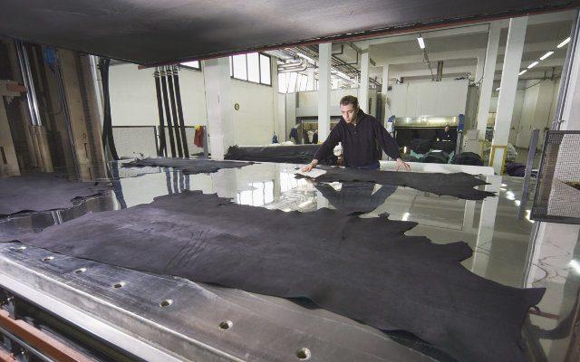 O uso de enzimas na indústria do couro