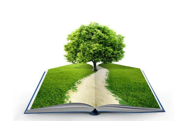 projeto-educação-e-o-ensino-de-qualidade