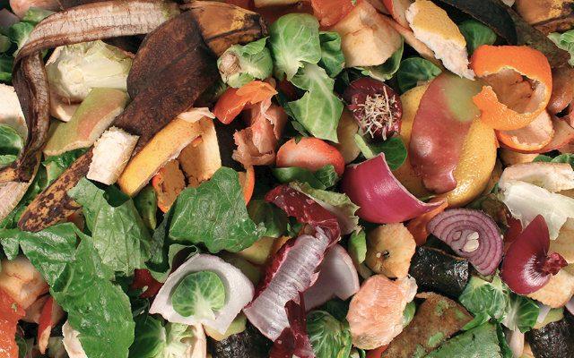 Europeus estão cada vez mais preocupados em evitar o desperdício de alimentos