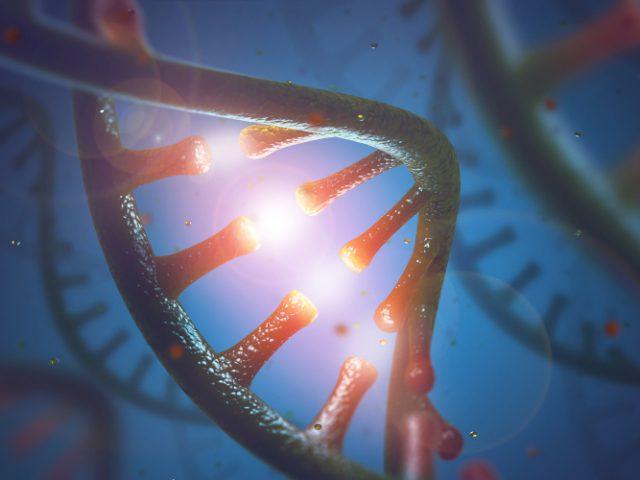 O que é o RNA?