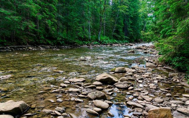 a-importancia-da-conservacao-de-rios-e-suas-nascentes