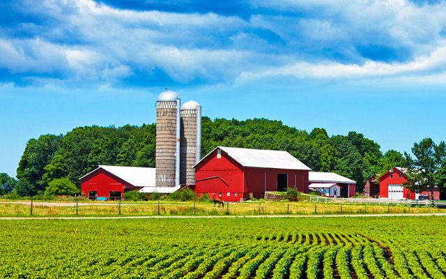 biorrendimento-aumento-da-producao-agricola-e-sustentabilidade