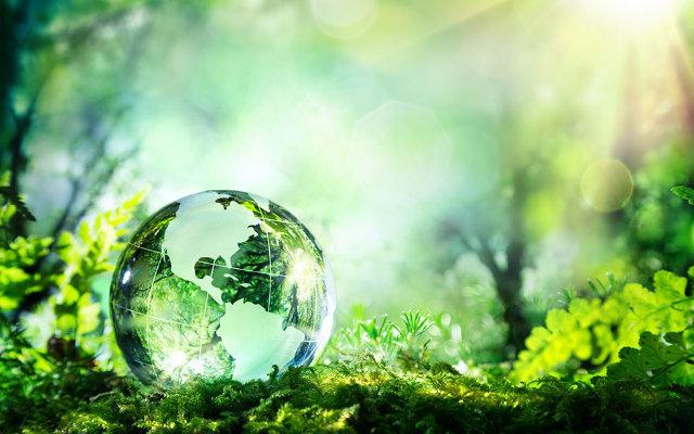 como-surgiu-a-ecologia