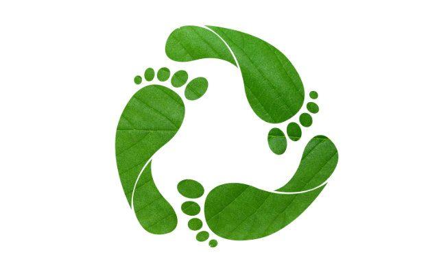 O que é Pegada de Carbono?