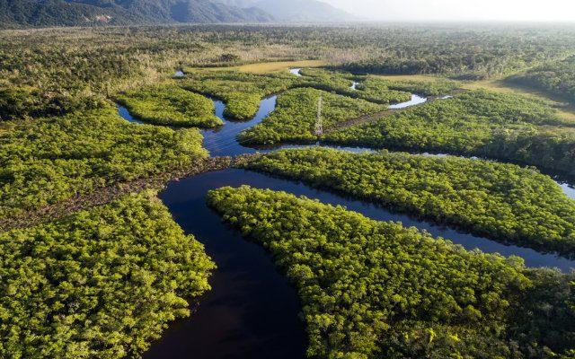 principais-ecossistemas-do-brasil