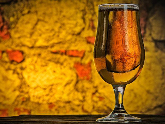 enzimas e cerveja