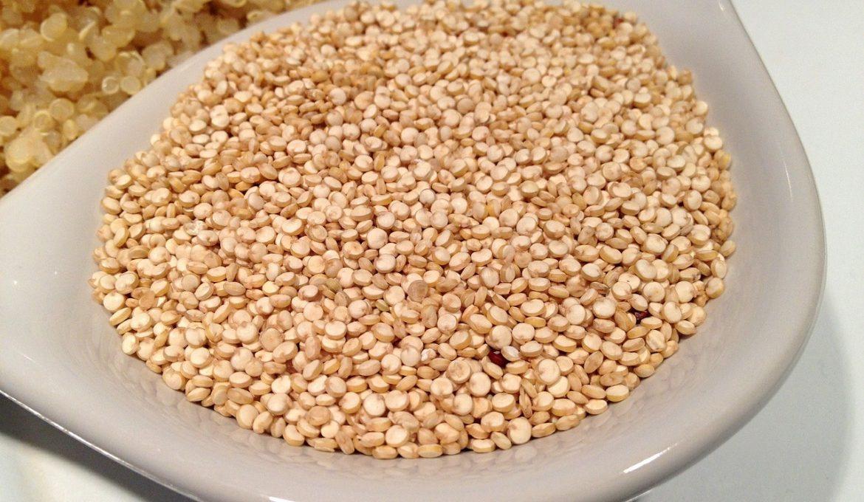 grãos antigos
