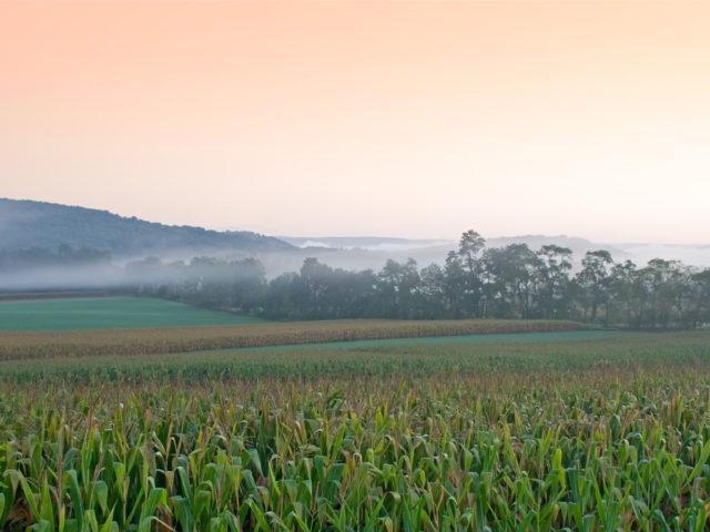 Ethanol Summit: Mais Produtividade e Menor Custo, Caminhos para Crescer