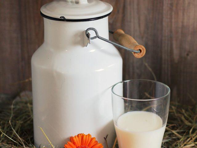A cada dez brasileiros adultos, quatro têm algum grau de intolerância a lactose