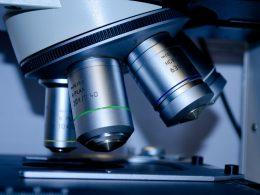 biotecnologia - crescimento
