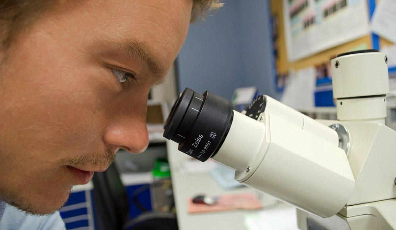 biotecnologia - história