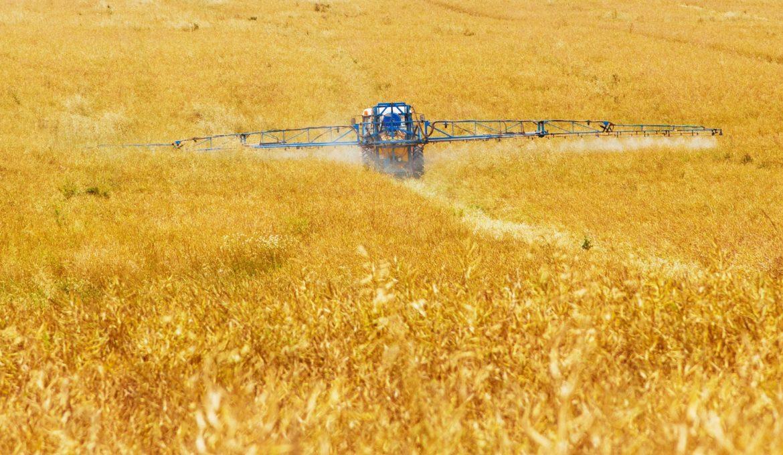 Redução no uso de fertilizantes nitrogenados gerará maior economia