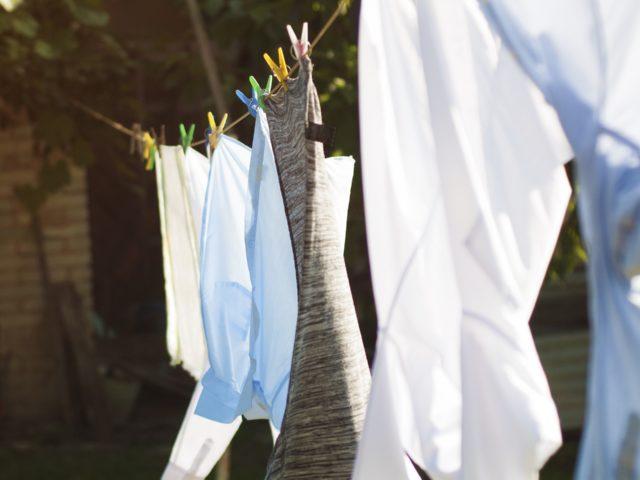 Detergentes enzimáticos ajudam na economia e o meio ambiente