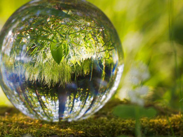 Ministério do Meio Ambiente abre inscrições de 9 novos cursos gratuitos na área de educação ambiental, comunicação e consumo sustentável