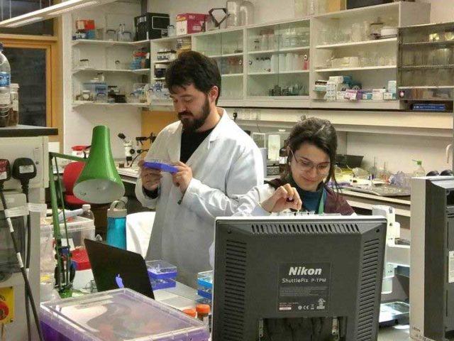 Bióloga brasileira ganha prêmio na Linnean Society de Londres