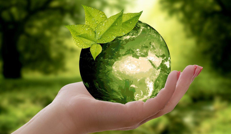 Vinte e quatro milhões de novos empregos podem ser gerados com a economia verde