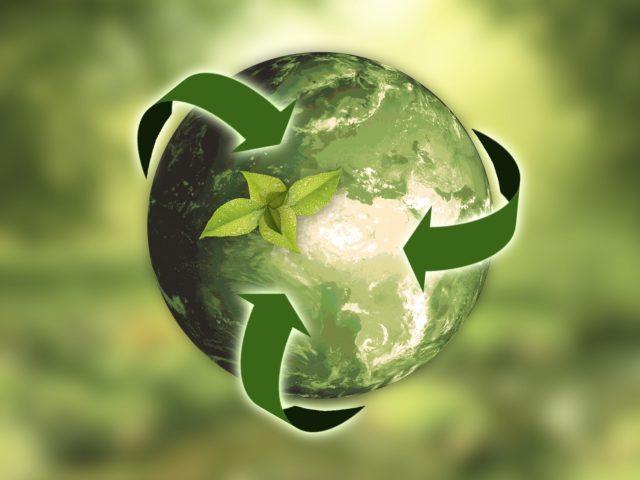 Fórum do Pacto Global lança relatório com dicas para a implementação dos ODS nas empresas