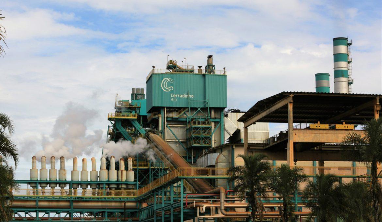 Especialista de CerradinhoBio cuenta la experiencia del uso de Fermax® en la industria