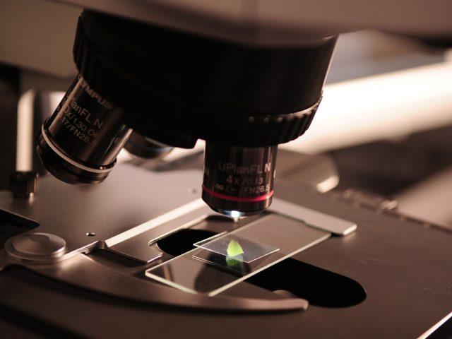 Cientistas da USP identificam enzima que pode ajudar a criar antibióticos mais eficazes