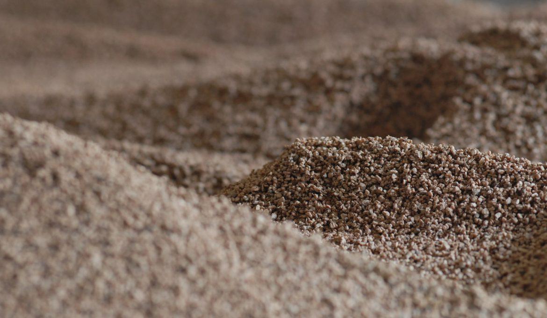 Identificada nova enzima que pode transformar biomassa em bioprodutos