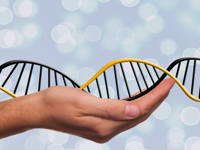 Quais são os principais processos que precisam do DNA atualmente?