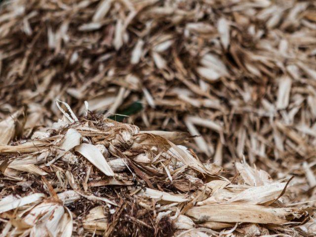 Por que o chorume produzido em aterros é tão perigoso?