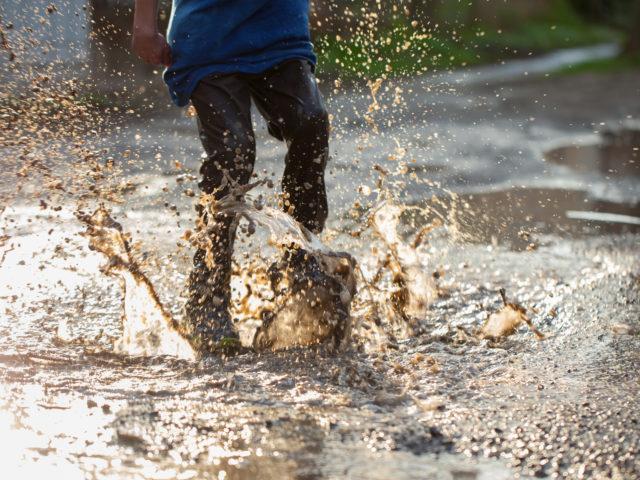 Gosta do cheiro de chuva? Você está sentindo bactérias em ação!