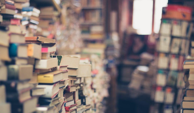 Dados do Inep mostram que 55% das escolas brasileiras não têm biblioteca ou sala de leitura