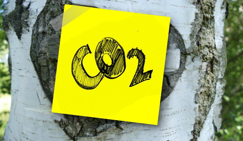Emissões de carbono alcançaram níveis recordes em 2018