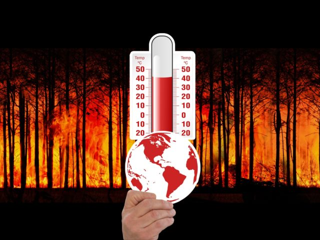 Durante a COP24, Organização Mundial de Saúde diz que benefícios para saúde superam custos do combate à mudança climática