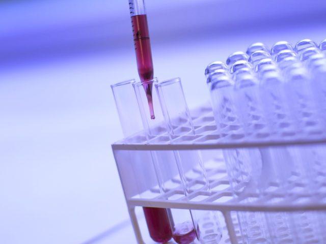 Novozymes e Descola.org lançam curso online sobre bioinovação