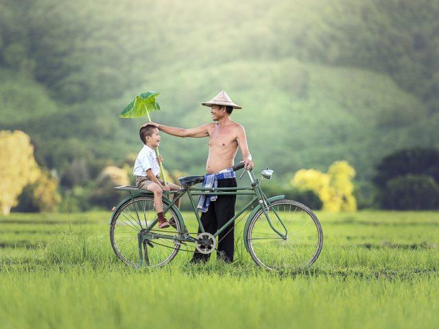 Região seca do Camboja recebe chuvas constantes após o reflorestamento