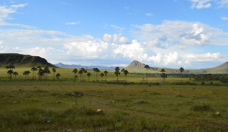 Agricultores do Cerrado comemoram os ganhos com o combate às mudanças climáticas