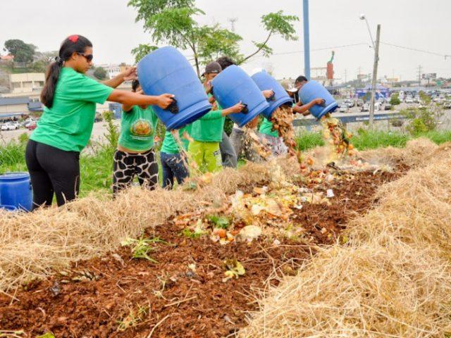 Projeto catarinense de compostagem é premiado na Alemanha