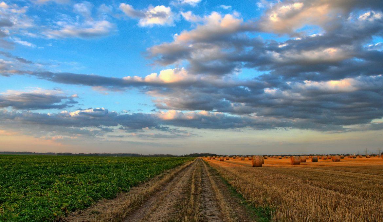 Projeto na Câmara Federal quer incentivar a agricultura de precisão
