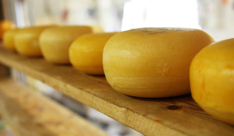 Produção e venda do queijo artesanal em análise na Comissão de Agricultura do Senado