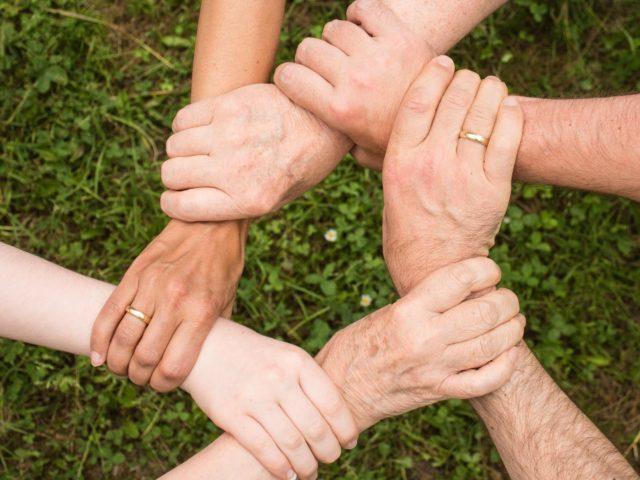 Novozymes conta com a Biologia para contribuir com os Objetivos de Desenvolvimento Sustentável