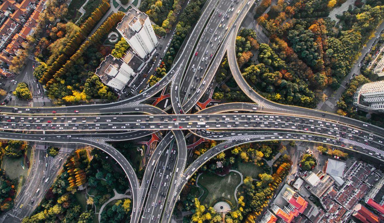 Estudo aponta o benefício das árvores para as cidades