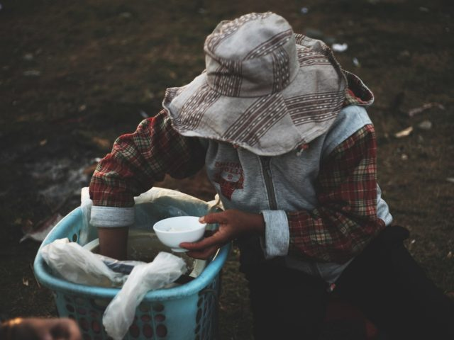 Para a FAO, combater a desnutrição e promover inovação na agricultura são prioridades
