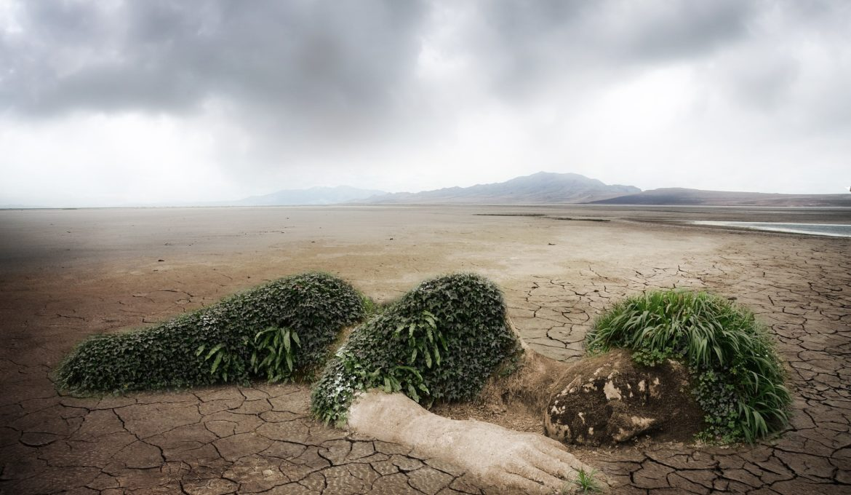 Chefe da ONU destaca quatro ações climáticas que devem ser tomadas pelos países