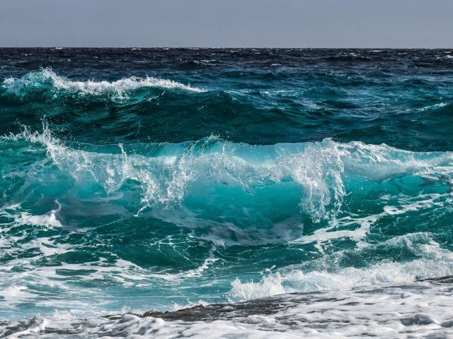 Aumento de gases de efeito estufa prejudica a oxigenação dos oceanos