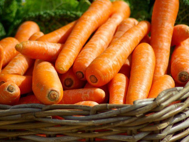 Novo relatório mostra que países precisam se mobilizar para evitar a falta de alimentos